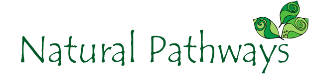 Bushcraft Courses by Natural Pathways